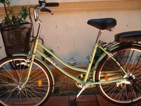 My New Saigon Bike