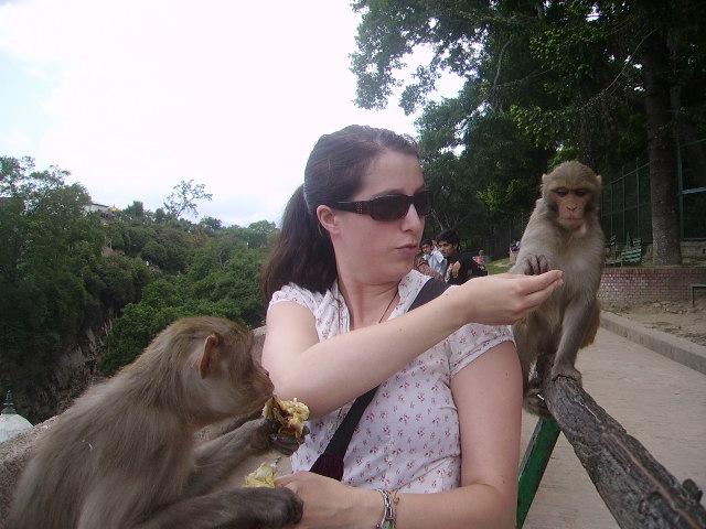 Feeding monkeys at Pashupatinath