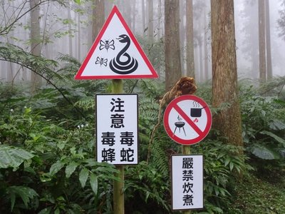 Beware of snakes and bees, but don't rustle up a hot pot
