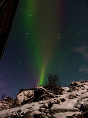 Aurora Stream