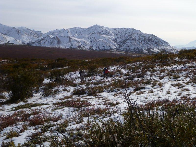 Denali-NationalPark-Hike-01