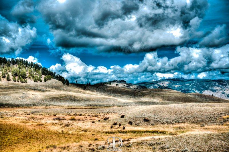 Dark Clouds above Yellowstone