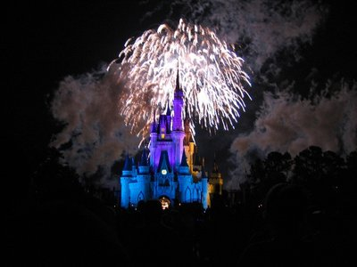 Wishes Fireworks at Magic Kingdom. Photo by jengelman