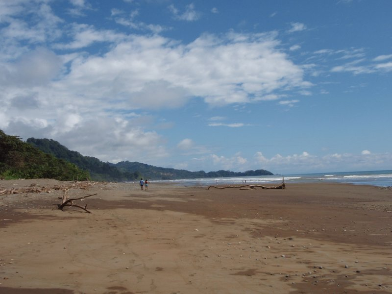 dominical beach´
