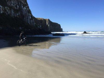 Vicotry Beach Trail, Otago Penninsula 3