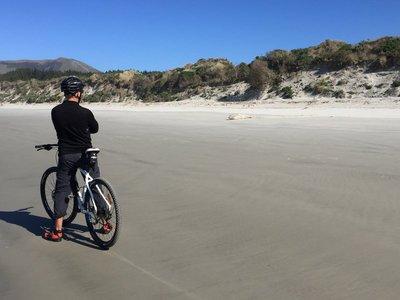 Vicotry Beach Trail, Otago Penninsula 6