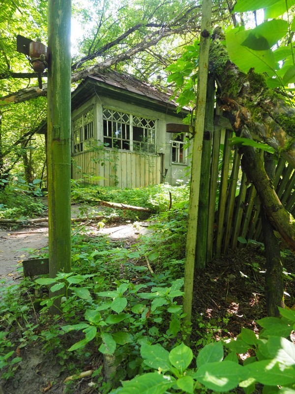 Abandoned House in Kopachi