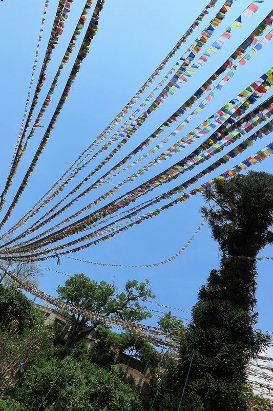 Prayer flags above