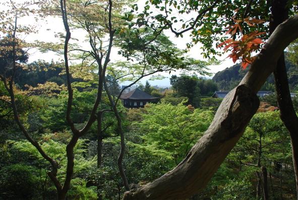 Kyoto- temple