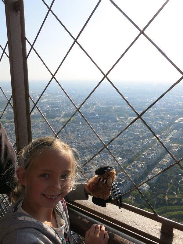 NPSKiwi Eiffel Tower