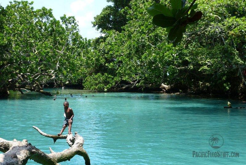 Blue lake swimming hole in Efate, Vanuatu
