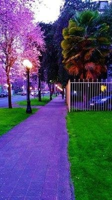 28-Kv_llning_i_Santiago.jpg