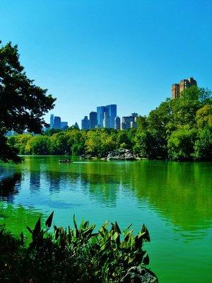51-Central_Park.jpg