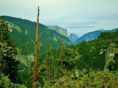 54-Yosemite_N_P_.jpg