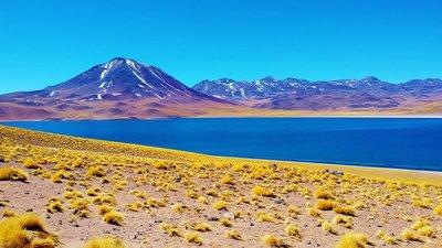 59-Lake_Vulcano_Miscanti.jpg