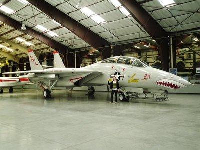 7-F14_Tomcat.jpg