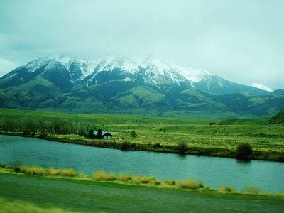 83-Montana.jpg
