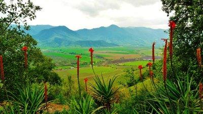 9-Colchagua_Valley.jpg