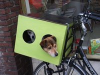 Dogsbox on bicycle,