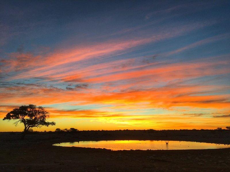 large_Namibia_-_Etosha_-_Sunset.jpg