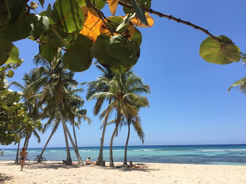 large_Playa_Giron_Beach.jpg