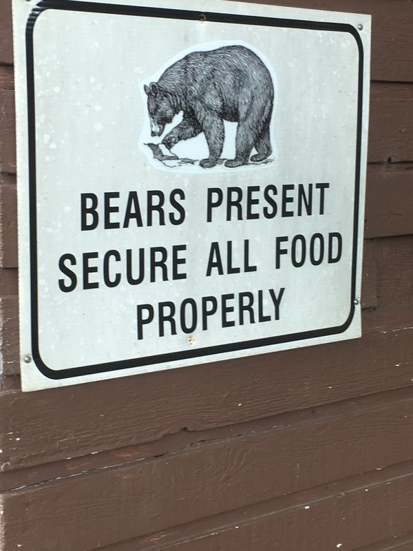 large_Port_Hardy_Bear_sign.jpg