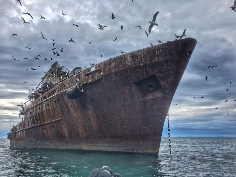 large_Ship_with_birds.jpg