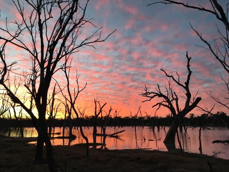 Lara Wetlands near Barcaldine