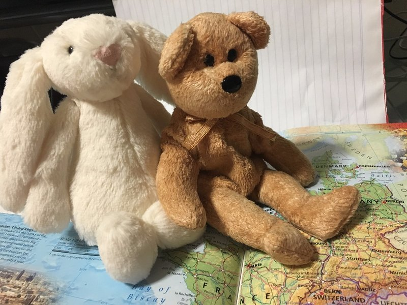 Bear & Bunny - our travelling buddies