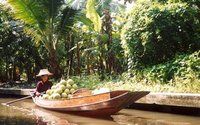 Selling fruit at the old floating market