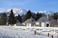 Jasper in winter