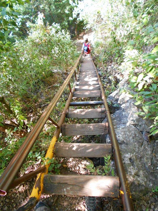 Road to Tamul