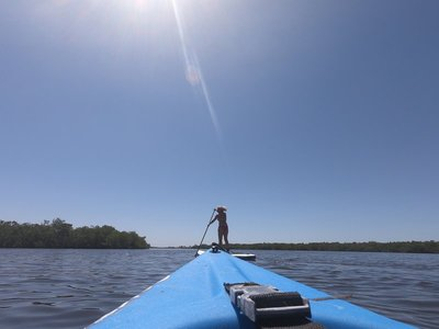 Paddle Boarding and Kayaking Matlacha
