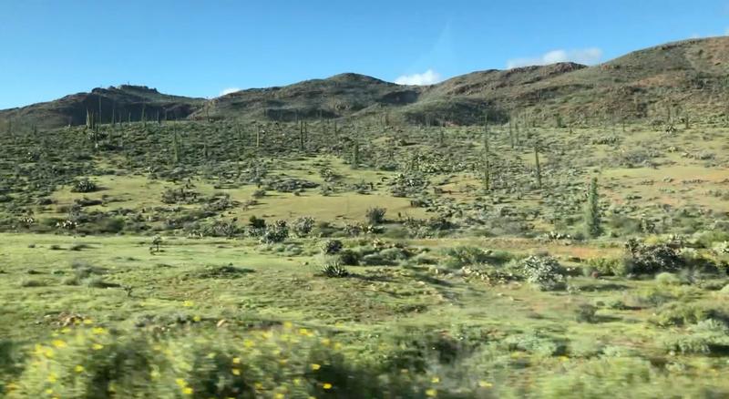 large_Desert.png