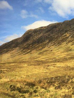 Highlands3.jpg