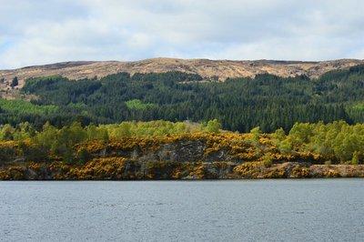 Loch_Ness8.jpg