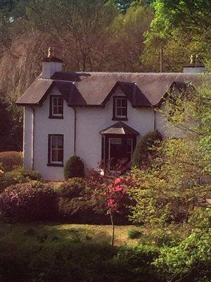 Scotland_Drive9.jpg