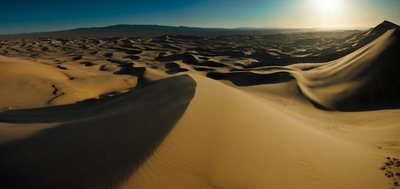 Dunes in the mongolian Gobi