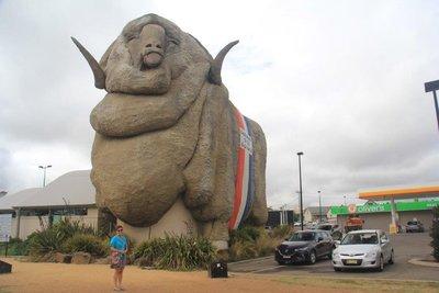 Big Merino at Goulburn