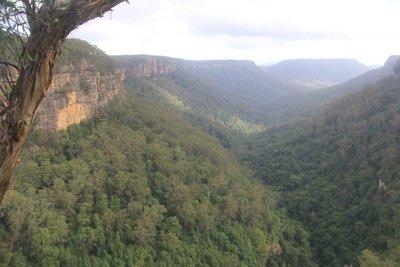 Fitzroy Falls area