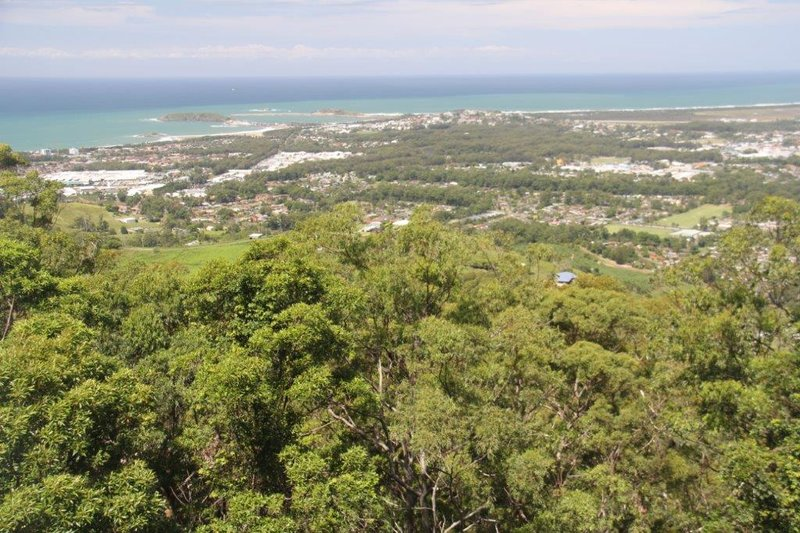 Coffs Harbour from the mountains