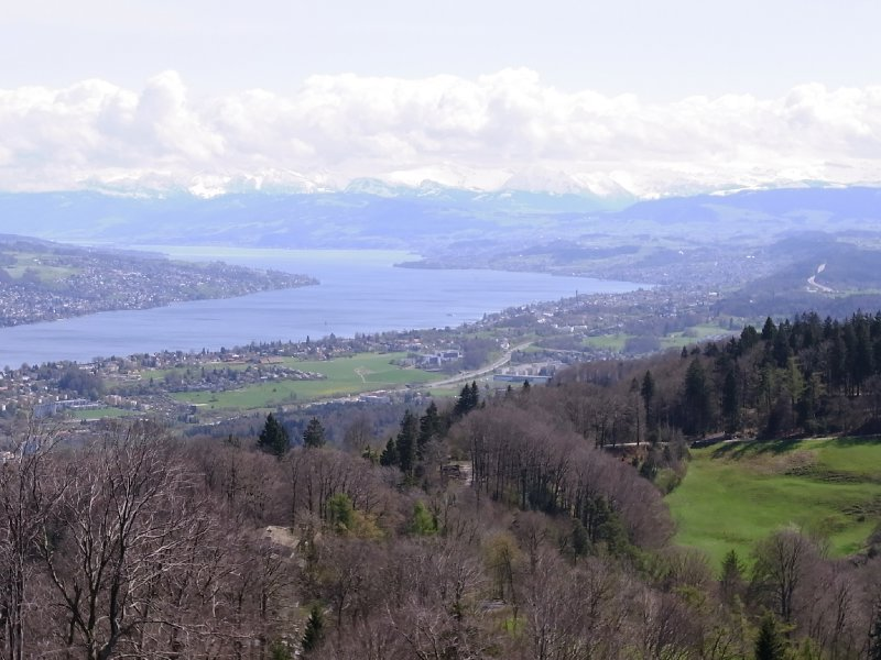 Zürich Lake 2012