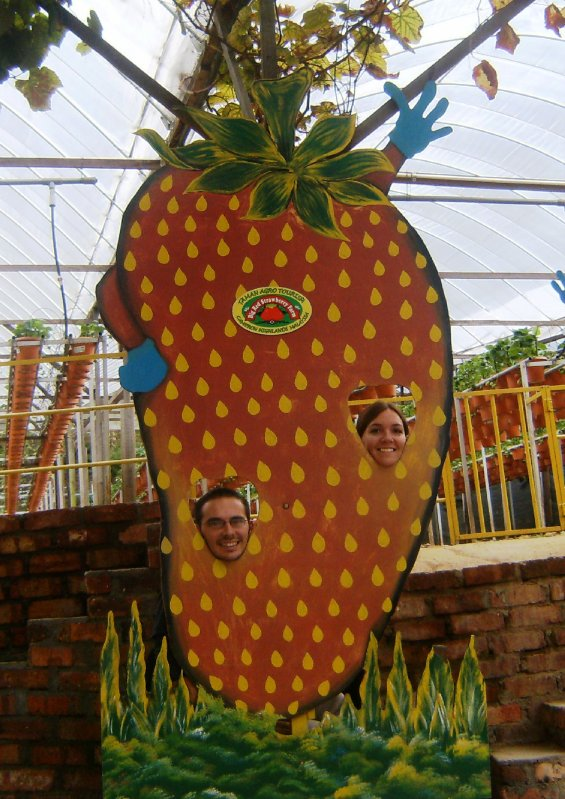 Us at Big Red Strawberry Farm