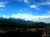Hotikika__NZ.jpg