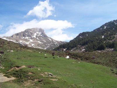eastern view of tigounatine