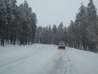 Colorado cruising
