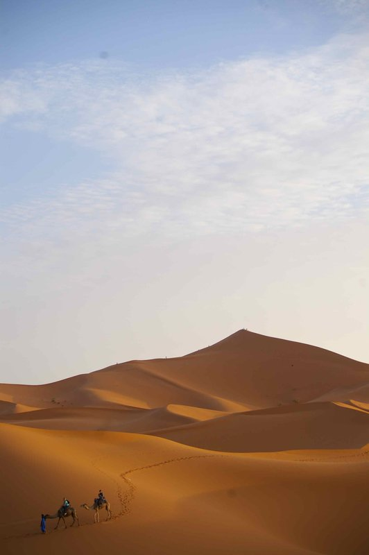 Classic dunes shot with camels