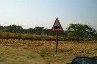 Warning - Hippos