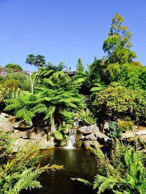 Oberservation deck at Blue Mountains Botanic Garden.