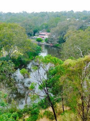 The Yarra River as it flows past Studley Boathouse in Yarra Bend Park.